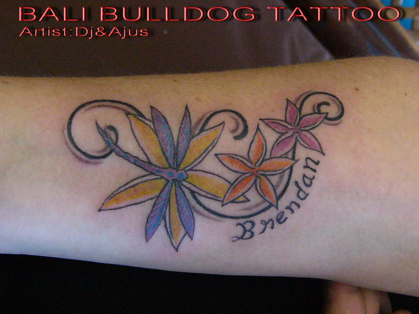 BALI BULLDOG TATTOO STUDIO
